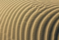 http://www.dreamstime.com/royalty-free-stock-photography-layers-sand-wonderful-clean-waves-sands-image39377897